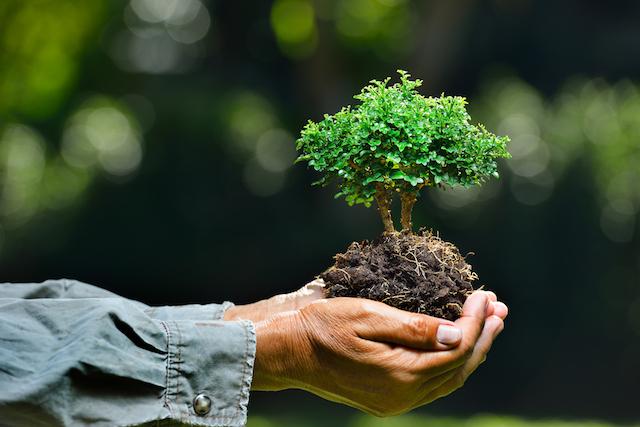 100 environment jobs to make a positive impact 50748927 ba7b 48a8 babe 121a292f2403